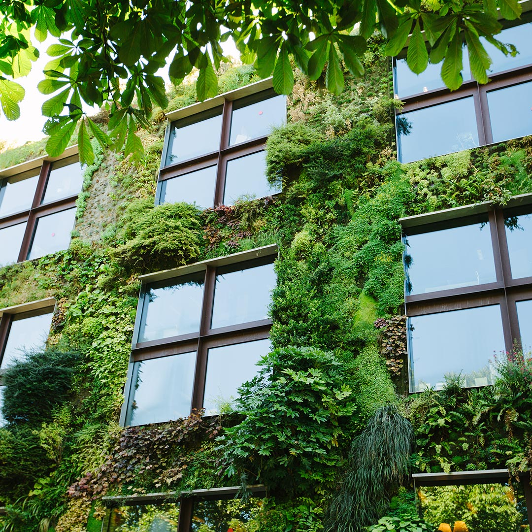belairdirect_new house trends_maisons écologiques